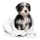5 Disposable PET TOWELS in Viscose cm 80 x 100