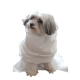 160 Disposable Pet Towels made of Absorbent Viscose cm 50x60 Made in Italy