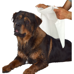 5 PET TOWELS Disposable In...